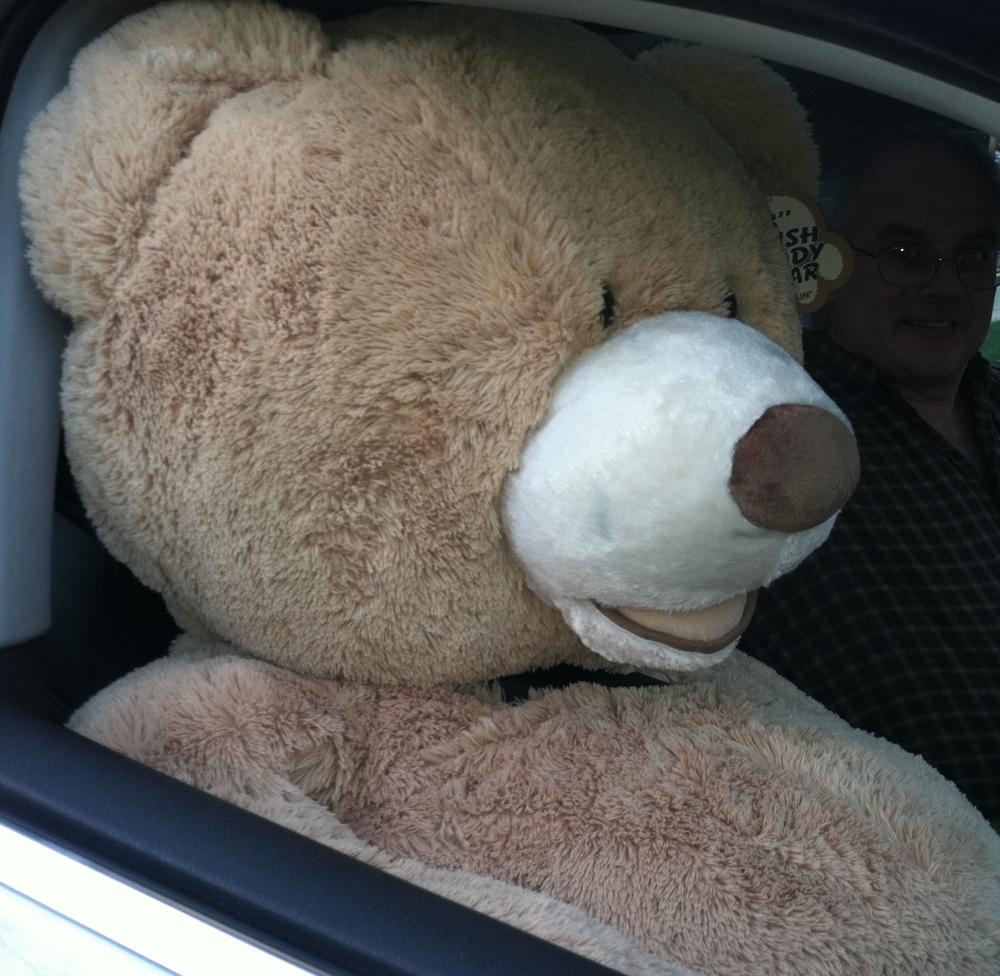 Win A Giant Teddy Bear! (1/2)